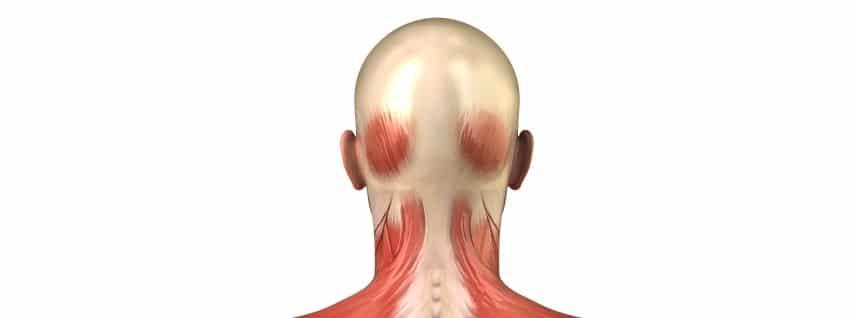 Rückenübungen - Nackenschmerzen