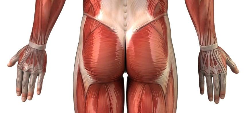 Rückenübungen - unterer Rücken