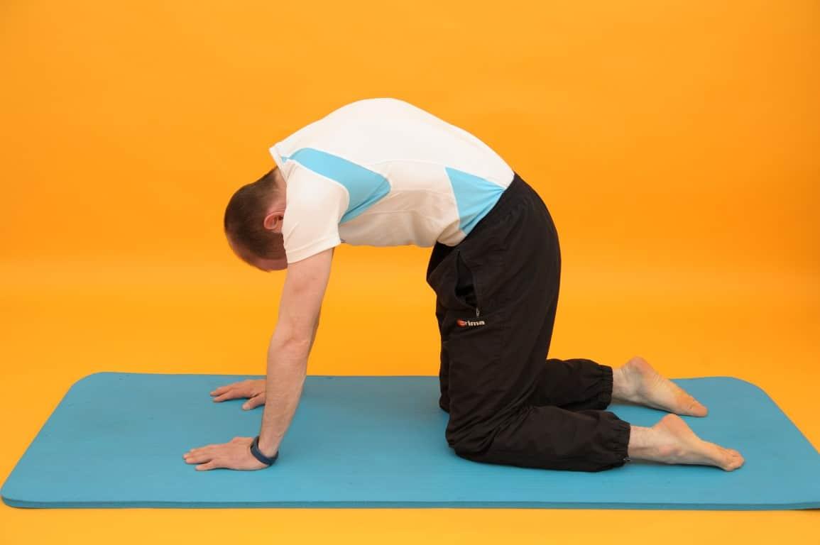 Rückenschmerzen mittlerer Rücken Katzenbuckel