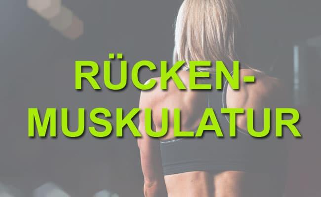 Rückenmuskulatur aufbauen